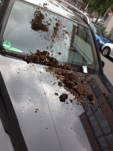 vergrabener SUV